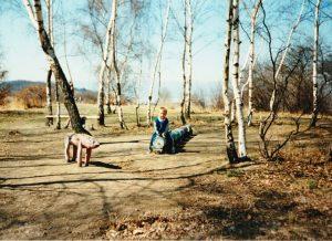 Pohádkový les Bílina a jeho historie