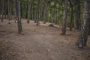 Pohádkový les Bílina