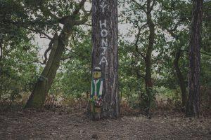 Pohádkový Honza - Pohádkový les Bílina