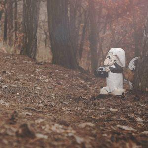 Vítejte v pohádkovém lese v Bílině